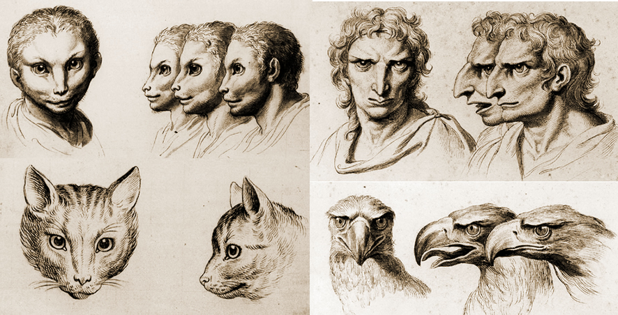 Humans With Cat Faces